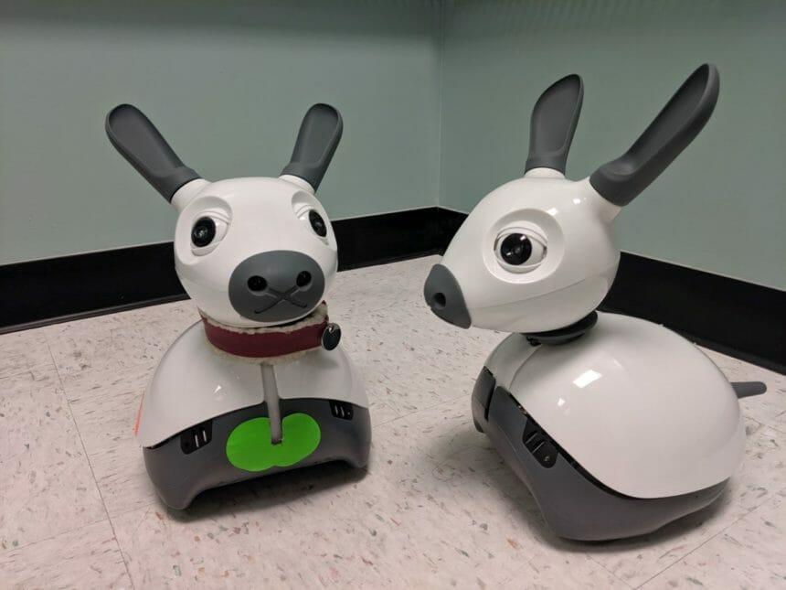 2 robot animals