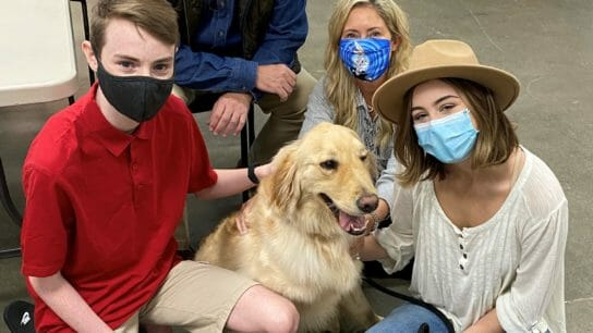People surrounding golden retriever