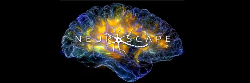 Neuroscape logo